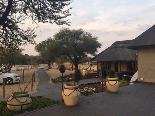 Kalahari Rest Lodge, Hukunsti
