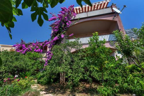 Apartments Roza, Makarska