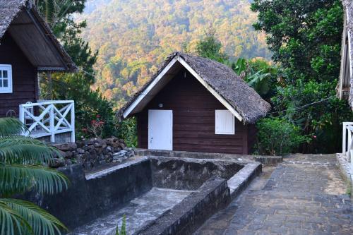 Foret Austral Ranomafana- Fianarantsoa, Vatovavy Fitovinany
