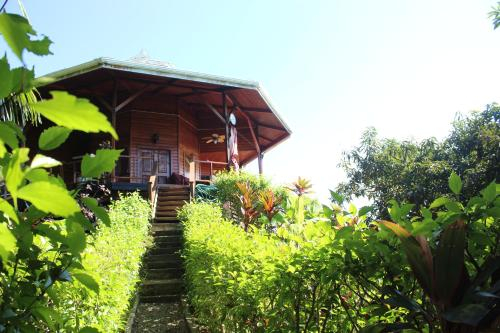 Light Eco-House, Bocas del Toro