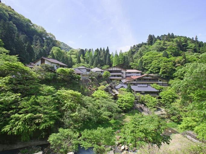 Tarutama Onsen Yamaguchi Ryokan, Minamiaso