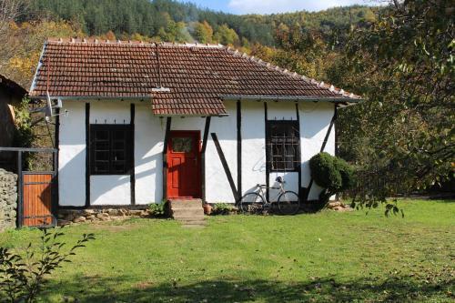 Clay House, Georgy Damyanovo