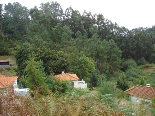 Holiday Home Casa Oliveira, Santa Cruz