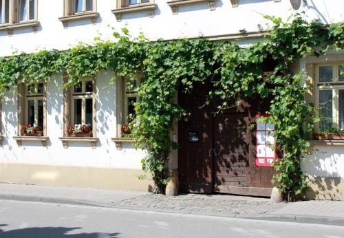 Vivo-Vino, Bad Dürkheim