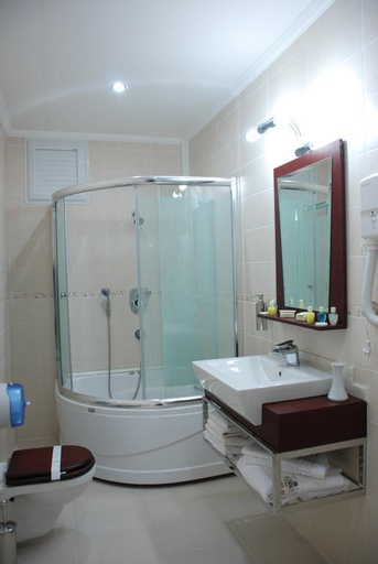 Grand Ani Hotel, Merkez