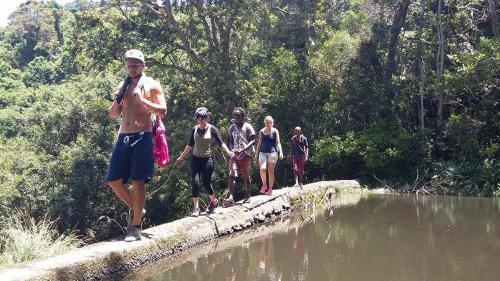 Jungle Monkey Backpackers, O.R.Tambo