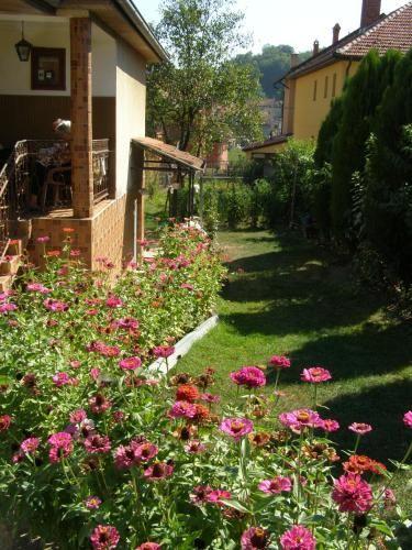 Guesthouse Sipetic, Lučani