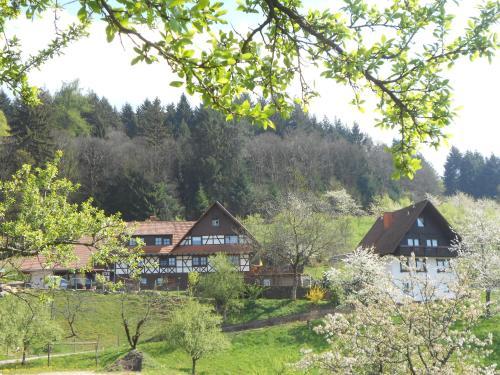 Ferienhof Fischer, Ortenaukreis