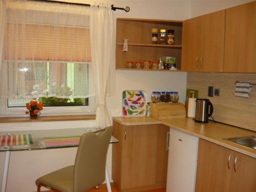 Apartments - Penzion Lena, Hradec Králové