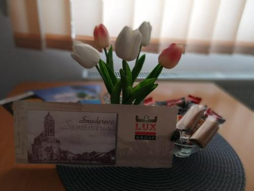 Lux Group Apartments, Smederevo