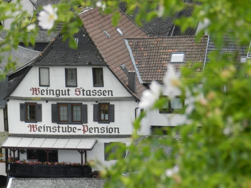 Weingut - Pension Stassen, Mainz-Bingen