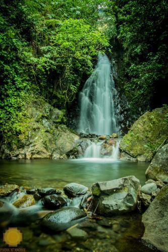 Reserva Ecologica Chontachaka, Manu