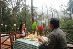 Mesilau Nature Resort, Ranau