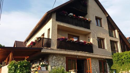 Apartments Sharka, Děčín