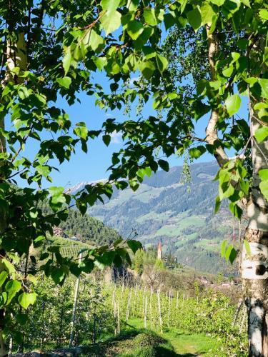 Tannerhof Bed & Breakfast, Bolzano