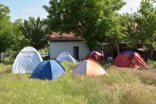 Rocklandcamp,