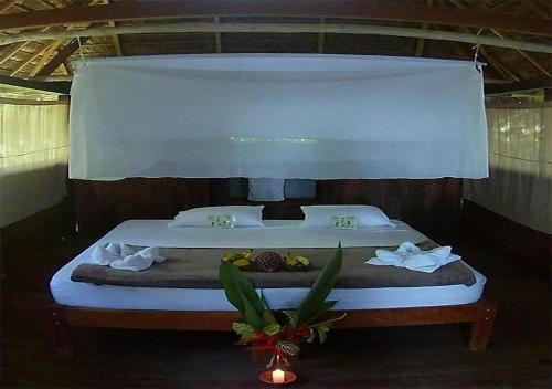 Ecolucerna Lodge Tambopata, Tambopata