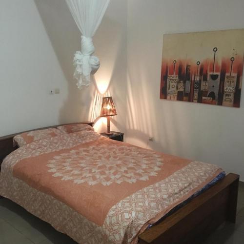 Residence Schaka Miniere, Conakry
