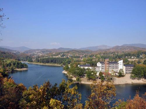 Jezero Hotel, Bor