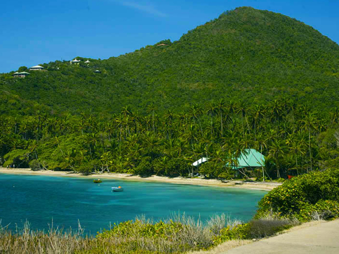 Spring House Hotel Bequia,