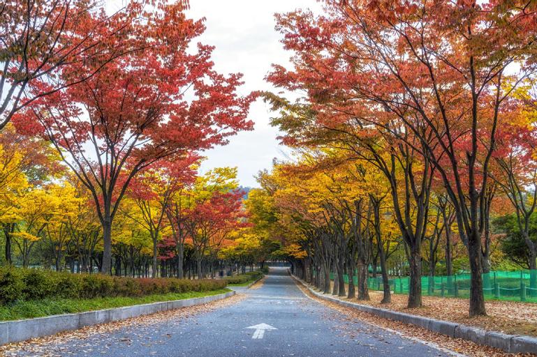 Hotel RG, Gyeyang
