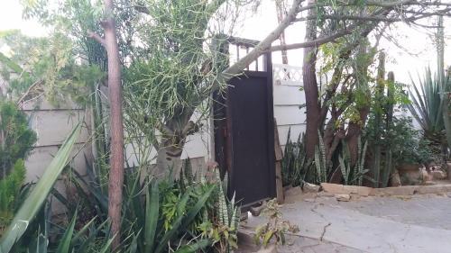 Sharon Rose Guesthouse, Windhoek West