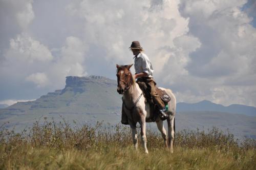 Khotso Lodge & Horse Trails, Sisonke