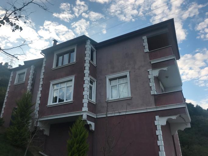 Royal Villa, Arsin