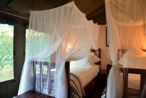 Elephant Valley Lodge, Hwange