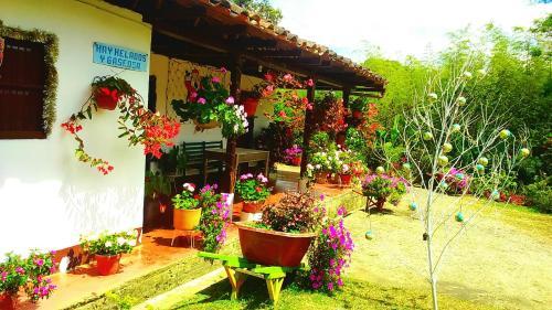 Hospedaje Casa de Felisa, San Agustín