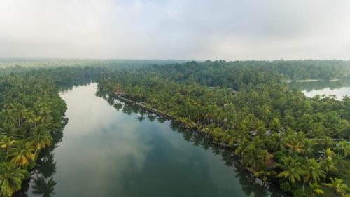 Vinis Farm - Own a Private Island to yourself!!!, Kollam