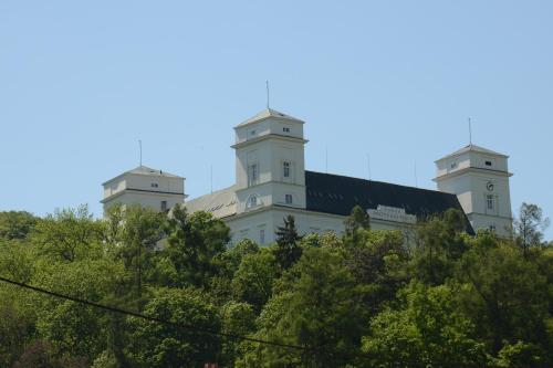 Zamek Racice, Vyškov