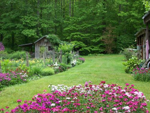 Garden of Eden Cabins, Cocke