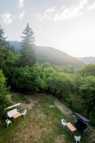 Boshuri Highland Guesthouse, Gori
