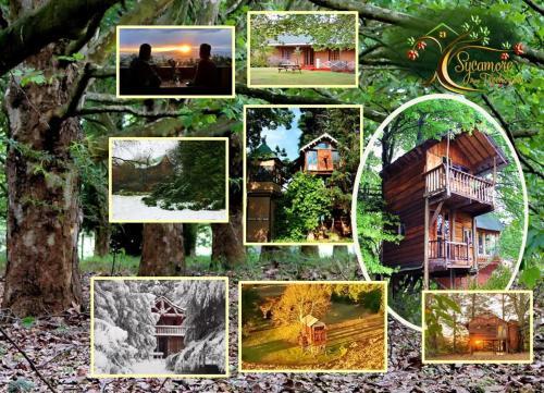 Sycamore Avenue Treehouses & Cottages Accommodation, Umgungundlovu