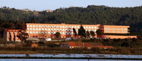 Palace Hotel & SPA Termas do Bicanho, Soure