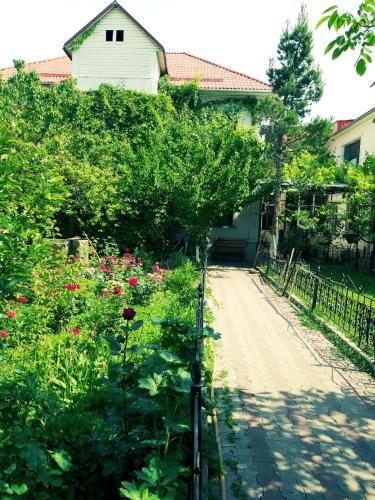 ShymHostle, Shymkent