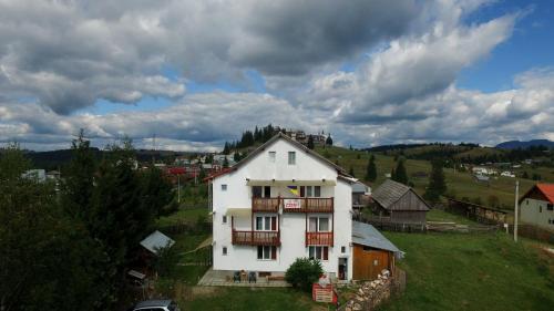 Vila Zenyt, Tiha Bargaului