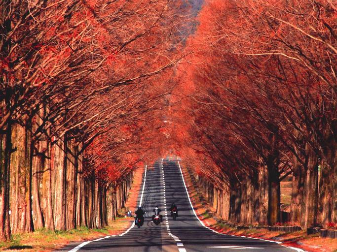 Racine Home Harie, Takashima