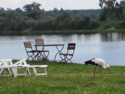Vacation Home Zabava u Sergheevicha, Parfinskiy rayon