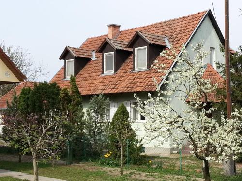 Gyula-tanya Vendeghaz, Csongrádi