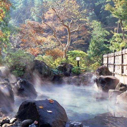 Atsugiiiyama Onsen Motoyu Ryokan, Atsugi