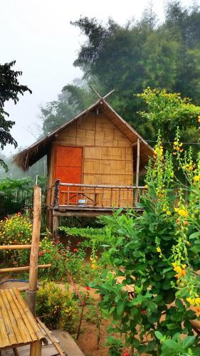 Baan AingDoi Homestay, Chiang Dao, Chiang Dao