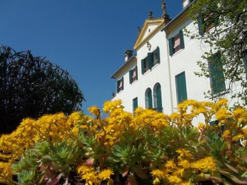 Villa Allegri Von Ghega, Venezia