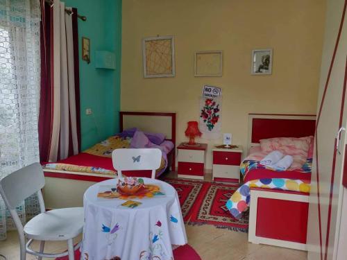 Private room historic center Elbasan, Elbasanit