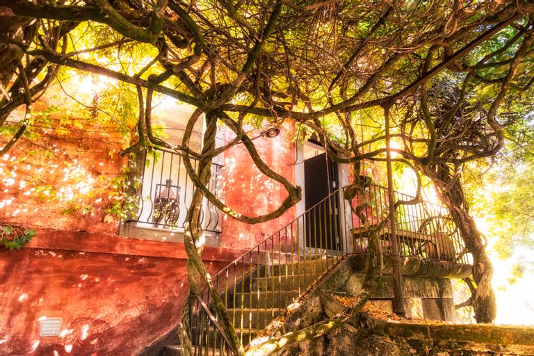 Quinta Do Ameal - Wine & Tourism, Ponte de Lima
