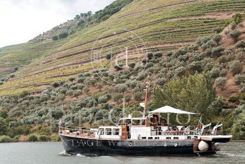 Pipadouro - Vintage Wine Travel, Alijó