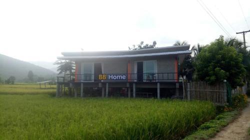 Bee Bee Home, Pua