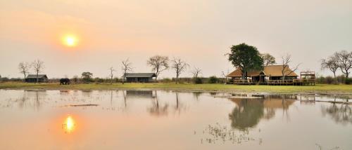 Nogatsaa Pans Lodge, Chobe
