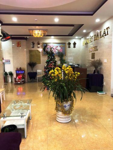 Đoi May Hotel, Đà Lạt